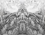 The Mechonado Symmetry